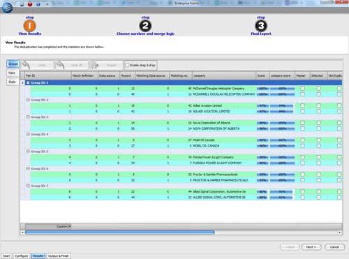 DataMatchEnterpriseScreenshot