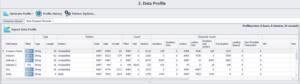 DataMatch Enterprise - Data Profiling