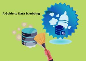 Data Scrubbing Software